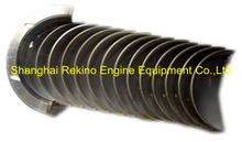 DCEC Cummins 6BT main bearing 3901090 engine parts